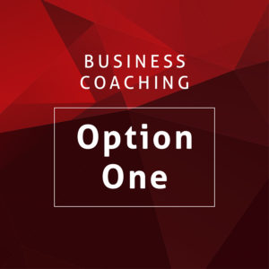 Business Coaching Option One