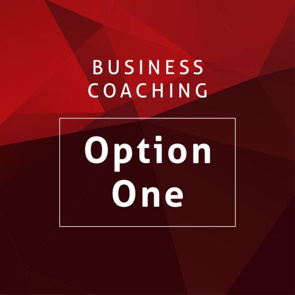 Business Coaching Option One