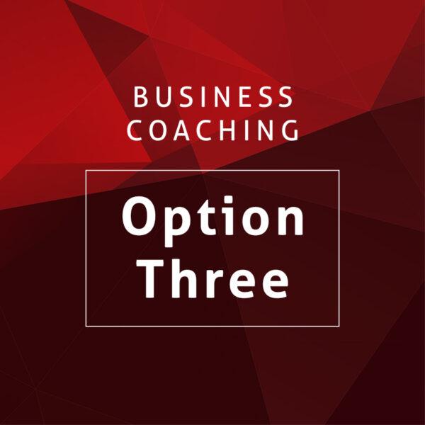 Business Coaching Option Three